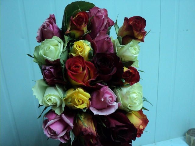 Buy Mixed Roses