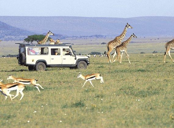 Buy East Africa Adventure Safari Tour